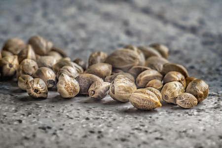 Hemp seeds on a grey background. Macro.