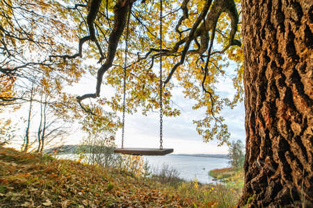 Wooden swing with chains on the oak near the lake in autumn. Imagens
