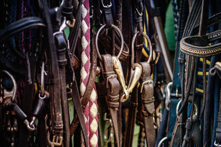 Horse-riding equipment on a wall. Close up. Imagens