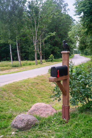 Black postbox with crow near the road. Close view.