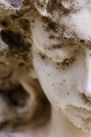 angel cemetery: Closeup of half of angel s face