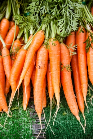 Vertical view of a bunch of carrots at the farmer s market  photo