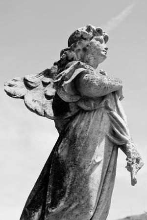 angel cemetery: Angel loooking up towards heaven