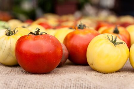 Heirloom tomatoes on display at the farmer s market  Banco de Imagens