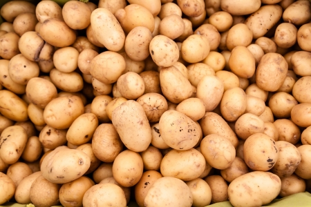 Horizontal shot of small white potatoes at the farmer s market