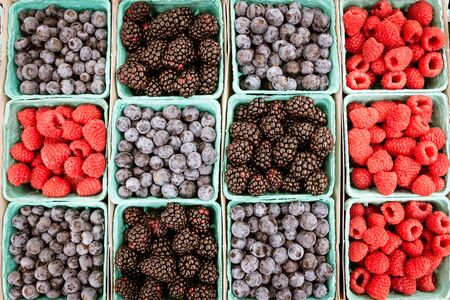 Multiple baskets of blueberries, blackberries and raspberries at the local farmers market.