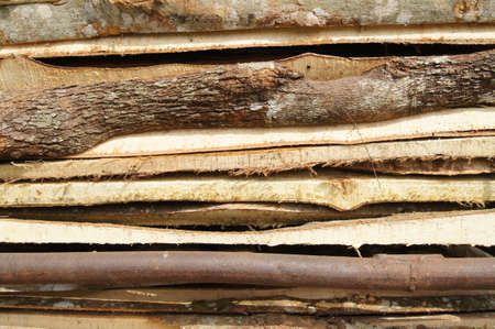 Cutting log texture photo