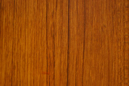 Wood pattern background photo