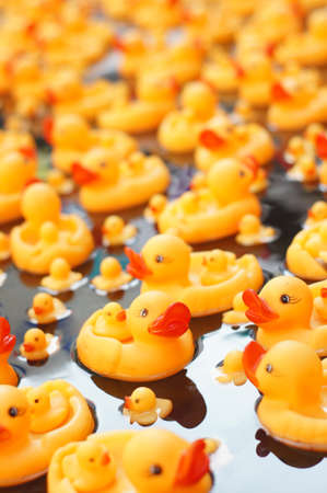 rubber ducks photo