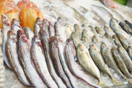Fresh fish on ice for sale in the market -Thailand photo