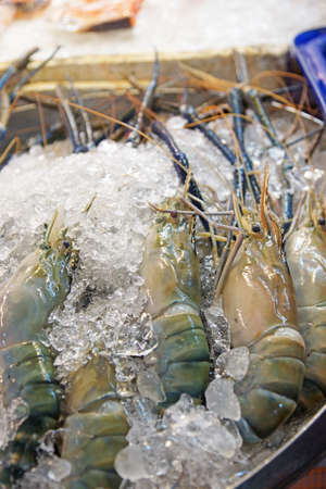 Prawn-River shrimp on ice for sale in the market -Thailand photo