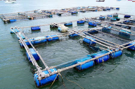 The coop for feeding fish in Thailand sea   photo