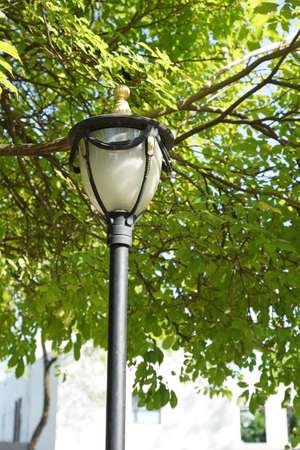 Lamp pole in the public park