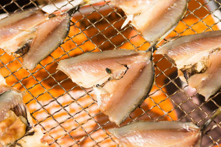 fishery products: Dried fish and fly on metal net
