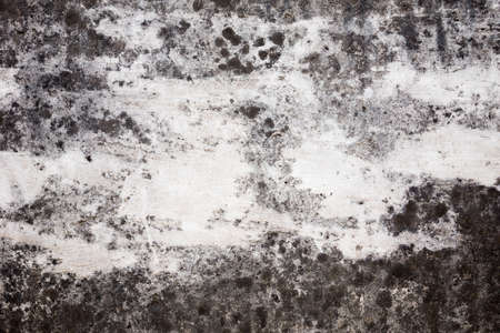 rough old cement wall texture photo