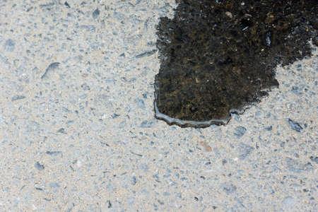 gocce di acqua: gocce d'acqua su asfalto