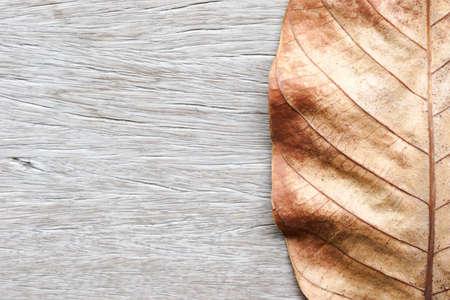 Parte de la hoja seca en el fondo de madera vieja