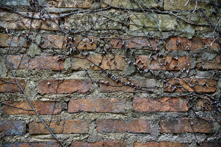 Old grunge red brick wall