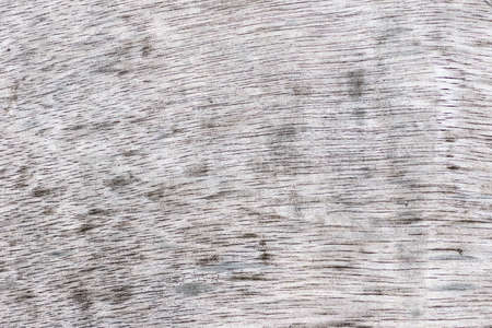 old wood texture: Abstract Old wood texture background