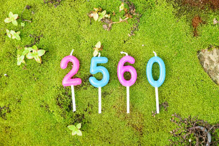 new year 2560 (B.E.) candle text on green moss background