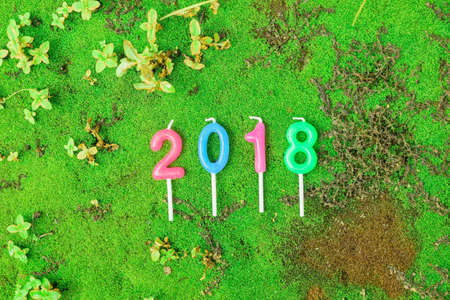 Candles Numeric text on green moss background - New year 2018 (A.D.)