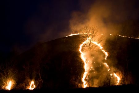 smolder: fire series: old dry grass fired in the night
