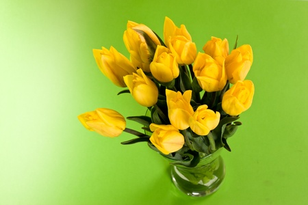 bunch of flowers, yellow tulip over green photo