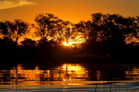 Sonnenuntergang im Okavango-Delta bei Sonnenuntergang, Botswana Standard-Bild - 84223194