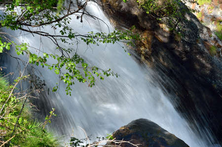 Flowing water between rocks and leaves, Valle dAosta, Italy