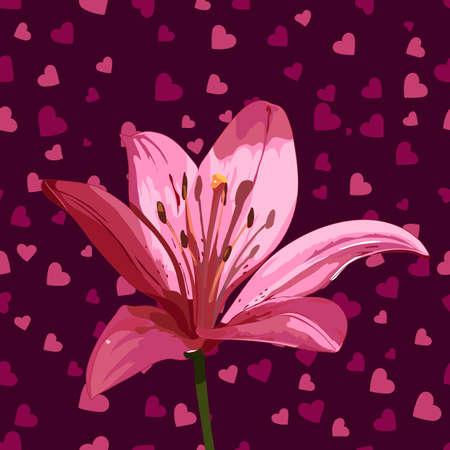 lilium: pink lily on hearts background. vector illustration Illustration