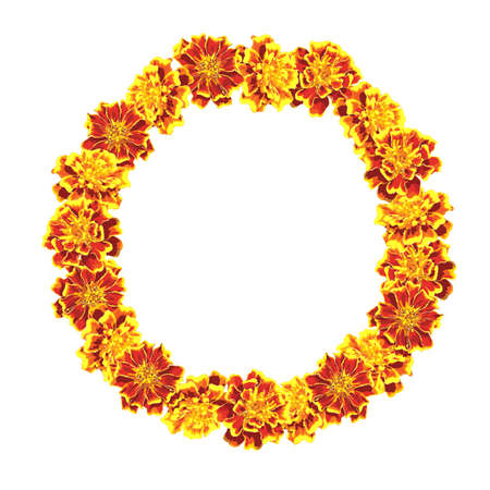 Circlet of marigold flowers. Vector frame. Put your text here