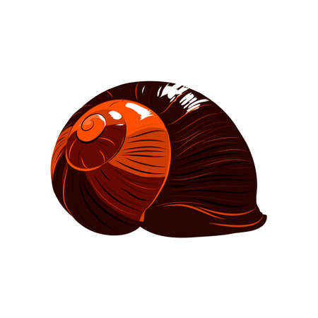 Color red snail.