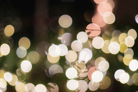 Bokeh from Christmas lights create a dreamy feel