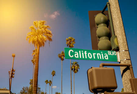 View of a typical Southern California scene with a California Bl sign, palm trees and sun rays