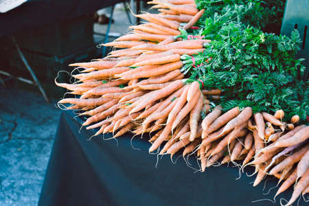 Hundreds of fresh and raw carrots are laying for sale in a bunch at a farmers market