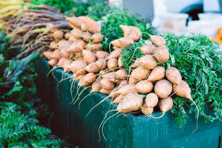 View of fresh organic produce bunched on a table in a farmers market stall