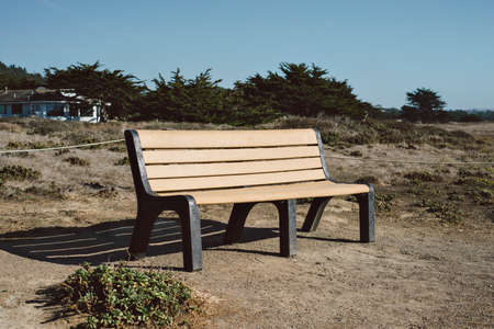 View of a park bench by the seaside on a sunny day