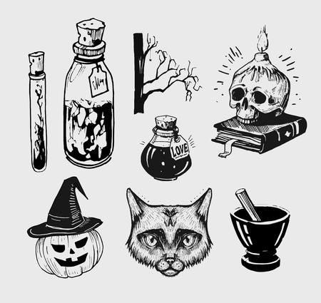 Halloween set. Witch things: skull,pumpkin, potions, cat, broom. Hand drawn illustration converted to vector. Stock Photo