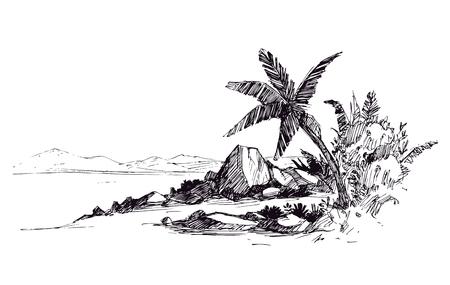 Spiaggia tropicale con palme e pietre. illustrazione vettoriale disegnata a mano di schizzo