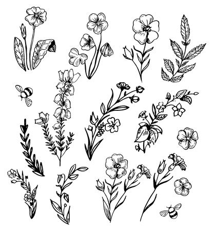 Set of wild flowers. Hand drawn sketch converted to vector