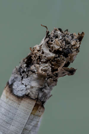Closeup of a burning cigarette ash Stock Photo