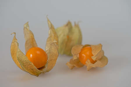 3 cape gooseberries on a white gray background