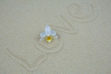 Love written in the sand with a small orchid blossom