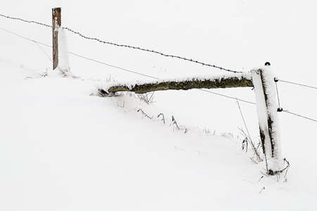 Wooden fence post with barbed wire on a pasture covered with snow Stockfoto