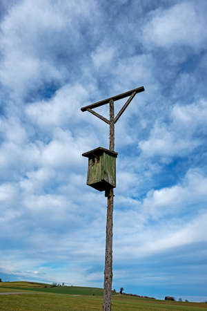 Wooden installation used by birds of prey as raised stand and a birdhouse for smaller birds for raising their posterity Stockfoto