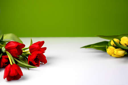red tulips on the left and in the back, slightly blurred yellow ones, white table, light green background