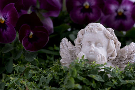 Little angel dreaming of heaven Stockfoto