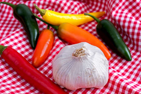 Chili peppers with a bulb of garlic lying on a white checkered towel