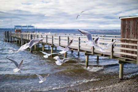 steamer dock in Diessen am Ammersee, Bavaria, with flying seagulls