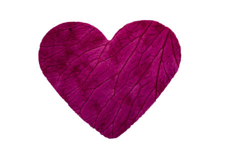 close up of a rose petal in the shape of a heart and showing the leaf structure